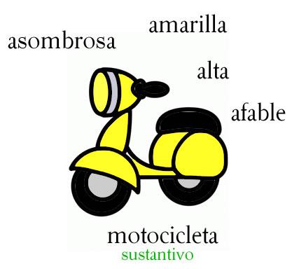 Adjetivos que comienzan con la letra a: asombrosa, amarilla, alta, afable.