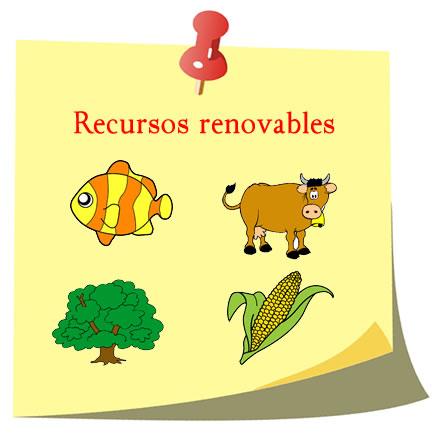 Ejemplos de recursos renovables, fauna y flora.
