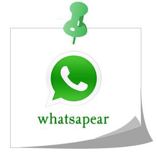 Neologismos como whatsapear, enviar mensaje de texto por whatsapp.