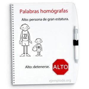 palabras homografas